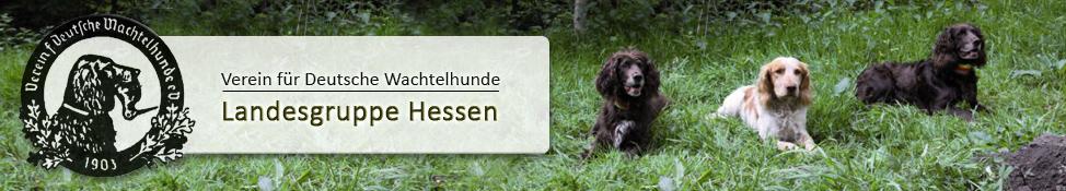 Landesgruppe Hessen